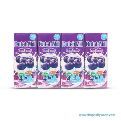 Dutchmill UHT 180ml Blue Berry(12)